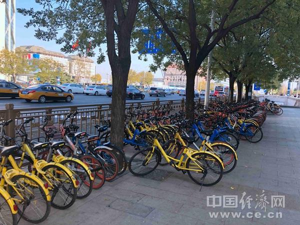世界自行车日 经常骑自行车好处竟有这么多
